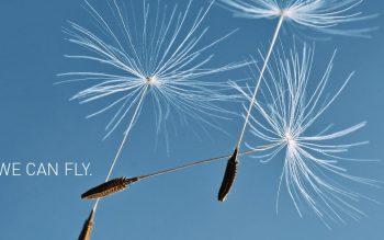 扶摇直上,于湛蓝天空飞翔的魔毯——来自DÜREN的飞翔地毯